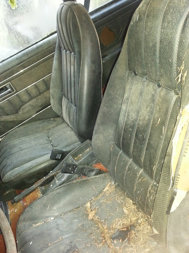 seat.front.jpg